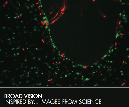 borad vision inspired by images from science