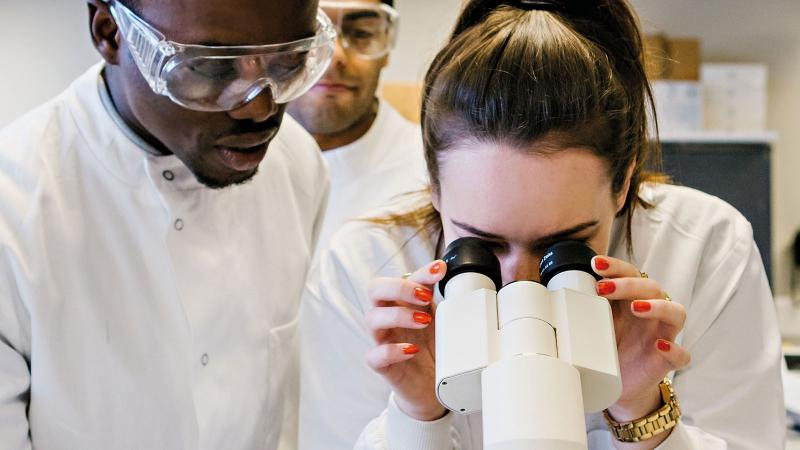 Link to Biochemistry with Foundation BSc Honours