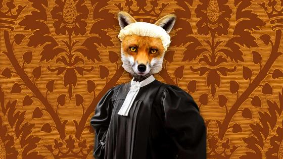 A lawyer with a fox's head