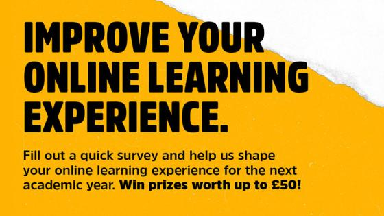 Online learning experience survey flyer