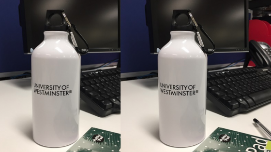 Westminster Water Bottle