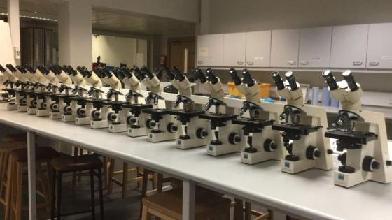 Microscopes placed in a line on a lab table