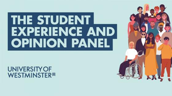 Student experience and opinion panel flyer